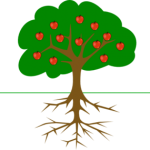 apple-tree-with-roots-md
