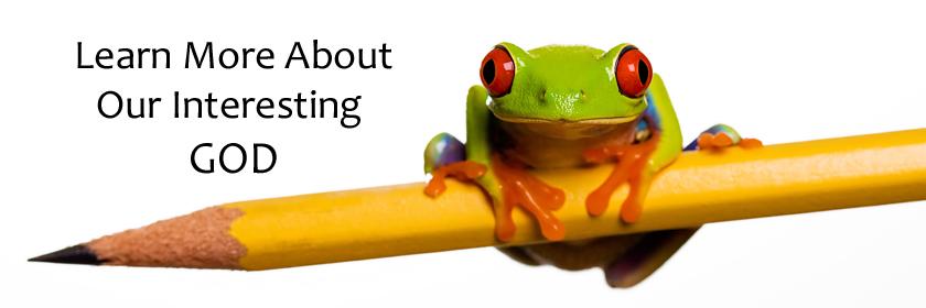 Regular Title Frog Banner